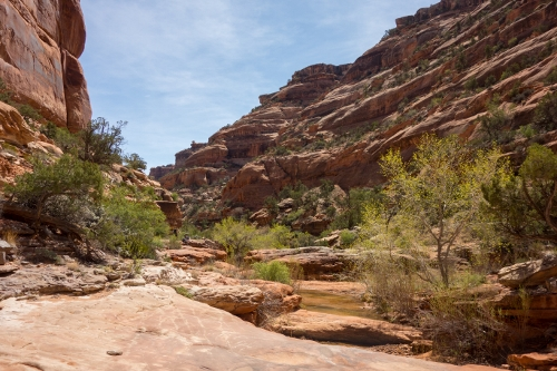 Backpacking fish and owl creek canyons mountain for Owl creek