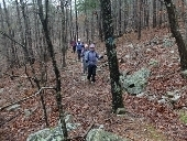 Section_Hiking_the__Ouachita_Trail.thumb