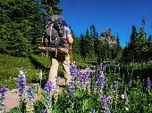 Backpacking in the Washington Cascades.jpg