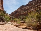 Backpacking_Fish_and_Owl_Creek_Canyons.t
