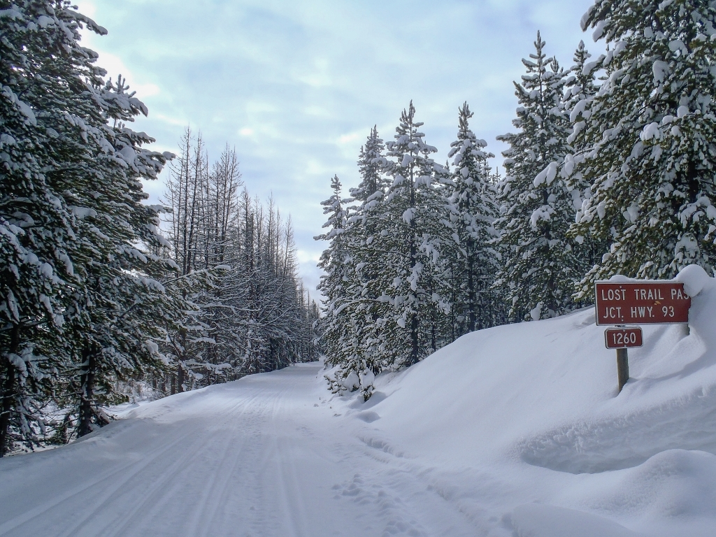 Groomed Forest Road in Beaverhead-Deerlodge National Forest