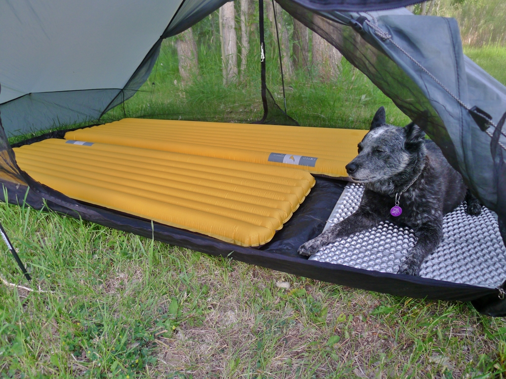 Six Moon Designs Lunar Duo Interior Space & Looking For Tent For 2 People + Dog - Gear - TrailGroove Magazine