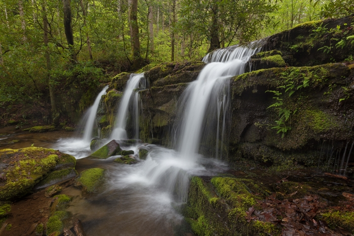 Hiking the Greenbrier Area in Great Smoky Mountains National Park