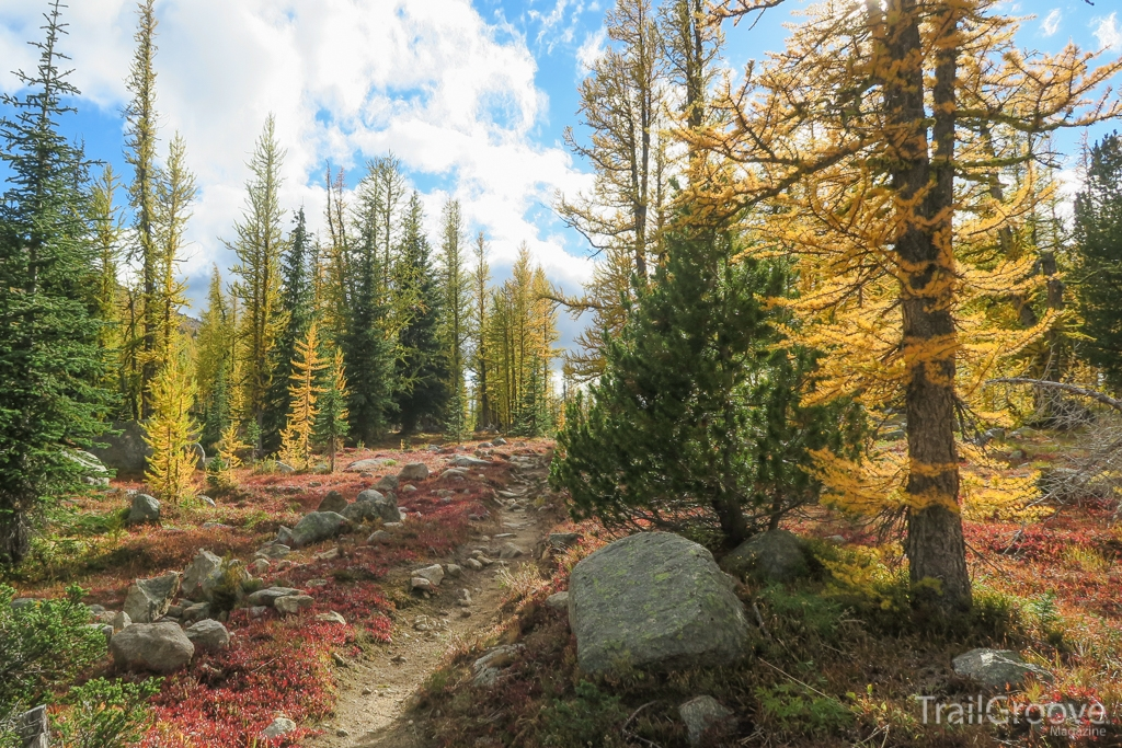 Hiking during Larch Season in the Northern Rockies
